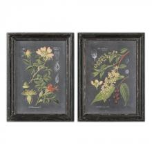 Uttermost 56053 - Uttermost Midnight Botanicals Wall Art S/2